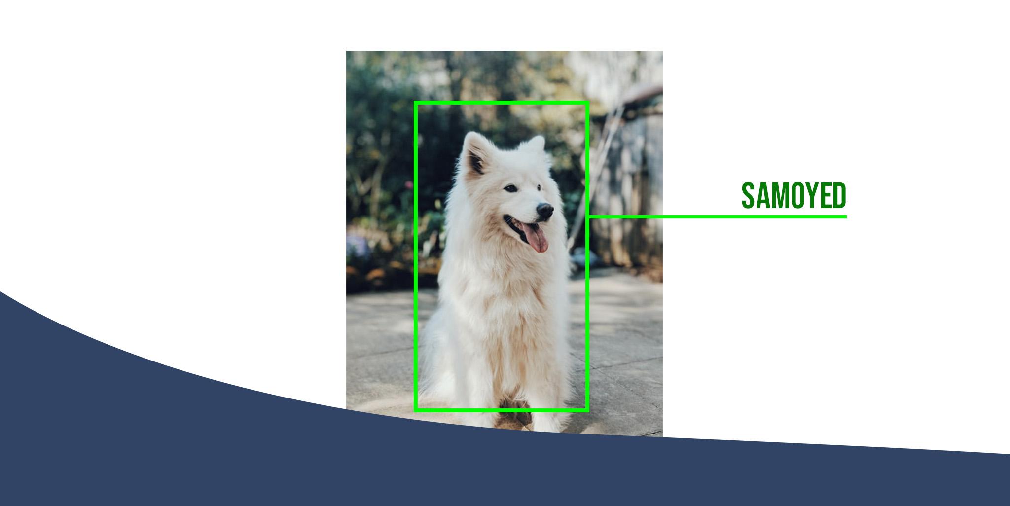 object detection keras