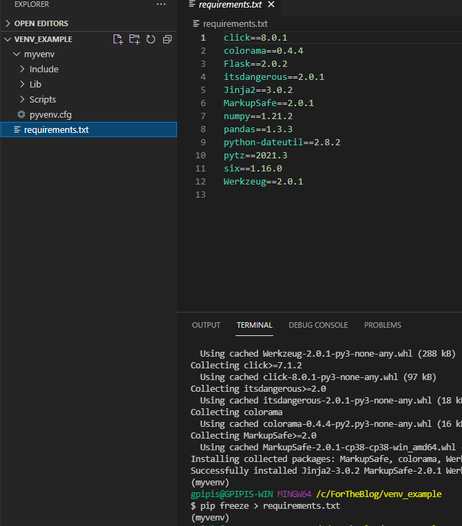 How to work with VS Code and Virtual Environments in Python 5